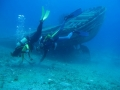 diving_02