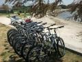 rent-a-bike_03